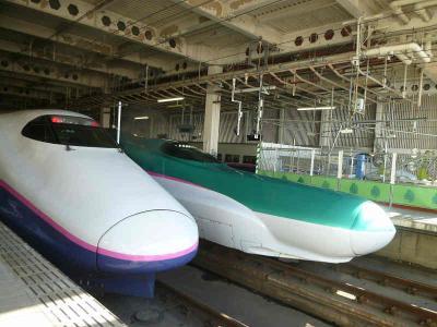 ☆---東北新幹線 はやぶさ------------------------------------☆