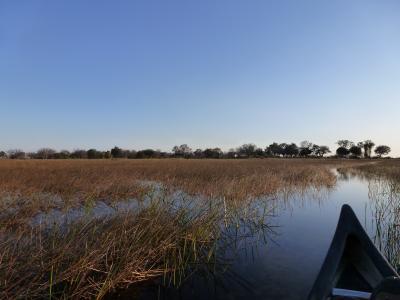 ボツワナ&ナミビアの旅(2)オカバンゴデルタ