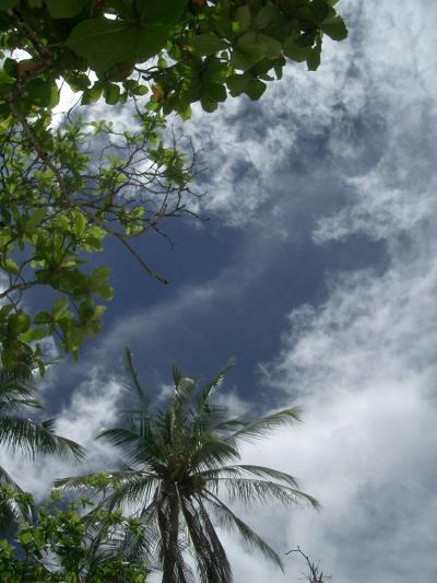 コスタリカ(Costa Rica)早歩き