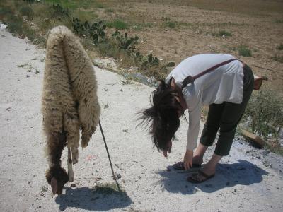 羊肉のバーベキュー(メシュウィー)がうまい★