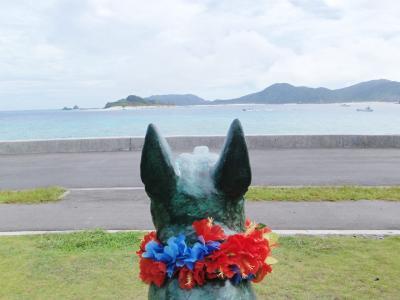 2011 沖縄③サヨナラザマミ