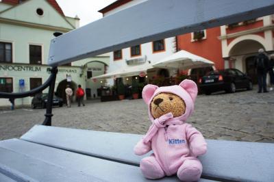 【チェコとオーストリア8日間の新婚旅行】くまたろうも行くよ ~ 3日目 ~