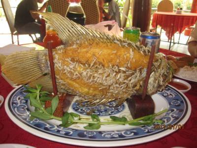 アジアハイウェイの源流を訪ねて(95)象魚(カタイ・Elephant Fish)の昼食。