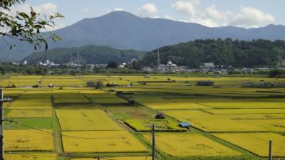 東北旅行記 2011秋 (5) 遠野から小岩井農場 (気仙沼から陸前高田を通過)