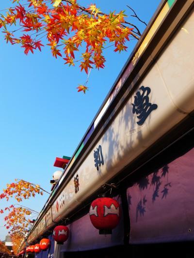 秋晴れのお散歩 in浅草 2011