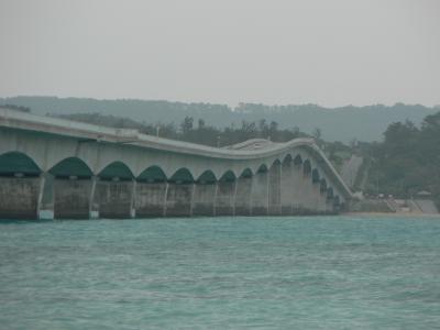 沖縄でソウキそばを食べよう・・・・・・・ドライブには古宇利大橋まで・・・・
