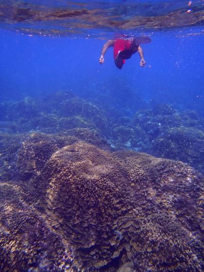 マリアナブルーに潜水せよ ⑥ サンゴの海&夕焼け空@テニアン後編~帰国