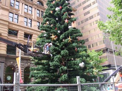 オーストラリア放浪記 2006~2007 Vol.2 シドニー街歩き