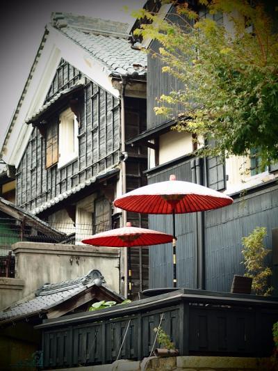 ぶらり日本の城めぐりその30<金華山にそびえ立つ岐阜城>と川原町散策で岐阜市を満喫する旅