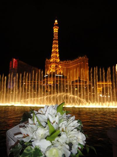 2011年 買い物天国、ラスベガス!