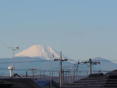 近所から見える富士山