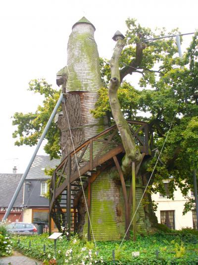 誰も行かない?! ノルマンディーの珍景? 小さな村の大木の中にある可愛い礼拝堂だよ~ん(^・^)