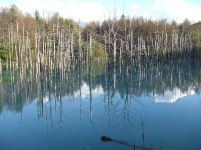 2011年初秋 北の国へ 夕暮れ間近の青い池