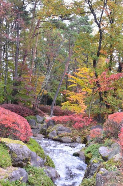 南信州4つの紅葉めぐり 【1】駒ヶ根高原