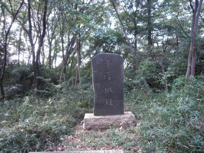 武蔵小沢城跡訪問