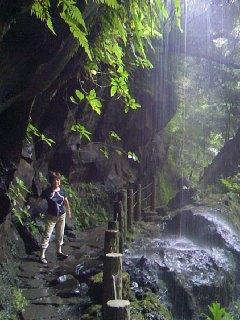 ジジババの八丈島旅行 自然と歴史探訪の島巡り