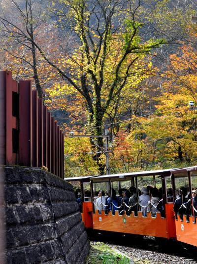 「 大糸線にゆられ~トロッコ列車で黒部峡谷へ 【2】」 2011