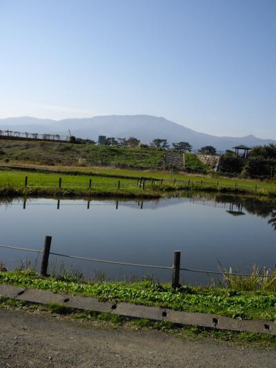 折りたたみ自転車でサイクリングpart25~大井町のひょうたん池~