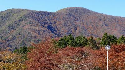 箱根ビジターセンターの紅葉