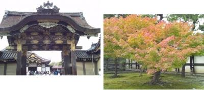 息子の住む秋の京都を訪ねて