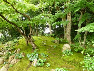 秋の下関でフグを食べる旅♪ Vol8(第2日目午後) ☆城下町の長府 毛利邸の美しい庭園を歩く♪