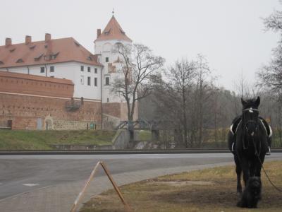 雨と雪のベラルーシ(2) ニャースヴィシュとミール城