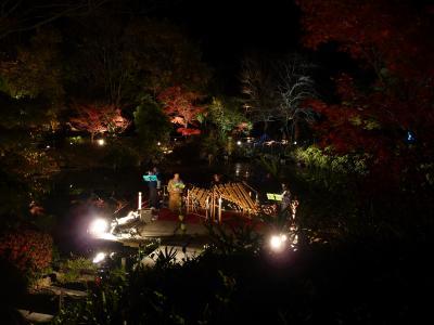 弥生の森歴史公園◆滋賀県野洲市で紅葉ライトアップの穴場をハシゴ【第一弾】