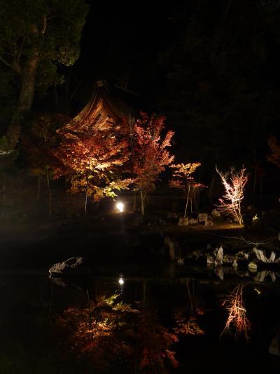 兵主大社庭園◆滋賀県野洲市で紅葉ライトアップの穴場をハシゴ【第二弾】
