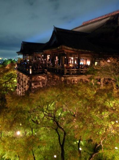 2011.11 雨の京都でちょっと早い紅葉狩り♪ ①