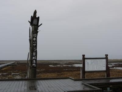 2011年☆初冬の北海道【さんご草の郷 かがり屋】
