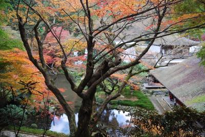 晩秋の九州・福岡の旅⑥雷山千如寺大悲王院を訪問する・・その2(作成中)