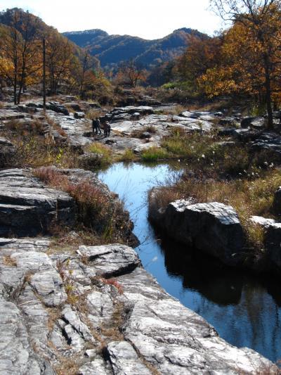 紅葉と岩畳の長瀞へ(2)紅葉と絶壁を眺めながら岩畳散策