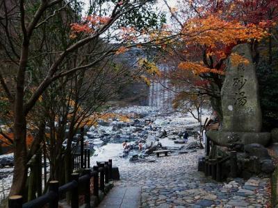 蒜山(ひるぜん)紅葉と湯原温泉の旅