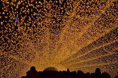 なばなの里イルミネーション冬華の競演2011
