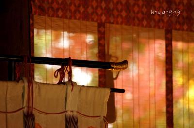 京都・宇治(宇治上神社・興聖寺・平等院)