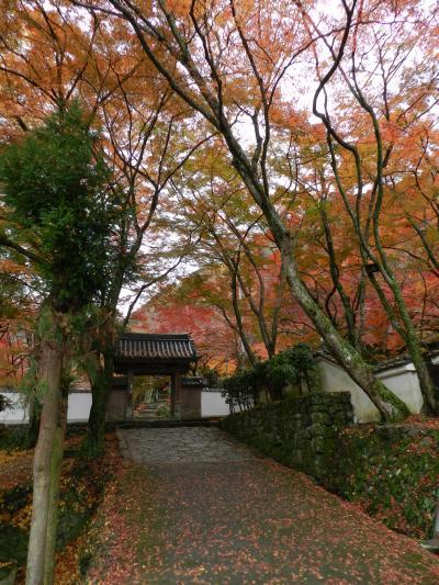 大阪の紅葉穴場◆『牛滝山 大威徳寺』(大阪府岸和田市)