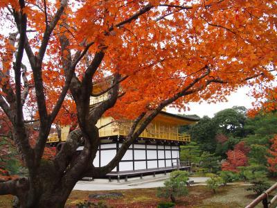 おばあちゃんと京都旅行☆