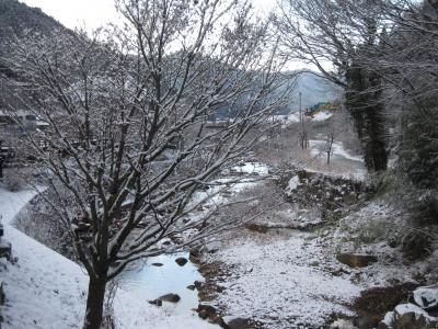 2011 初雪 ミステリーツアーに行ってきました