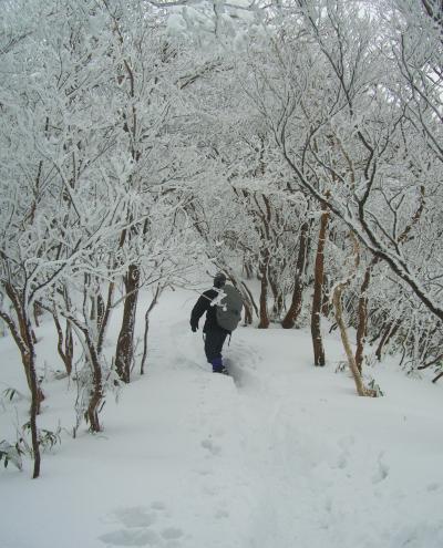 吹雪山賛歌 綿向山