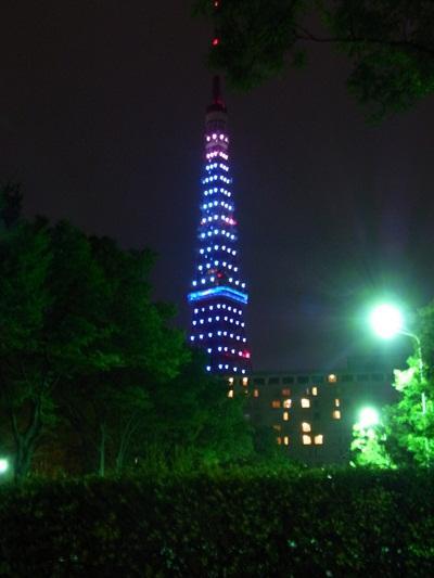大好きな東京タワーをバックに結婚記念日!