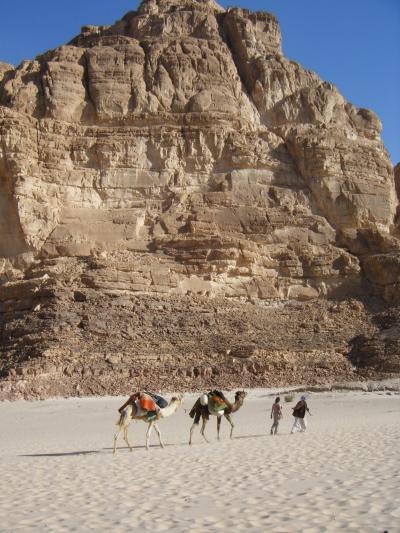 ヨルダンからの国境越えと見所豊富なシナイ半島の魅力