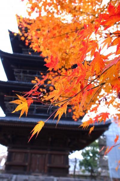 ☆2011冬の京都旅行☆クリスマス☆
