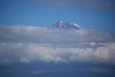 三島~新富士付近の間で見られた富士山