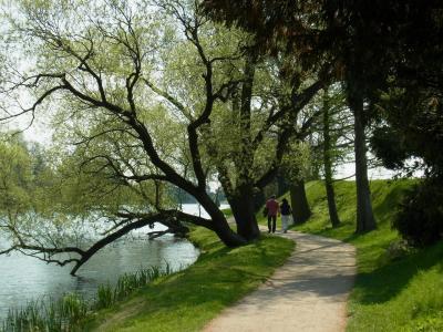 ドイツの美しい自然風景 その3 ヴェルリッツ公園という世界遺産