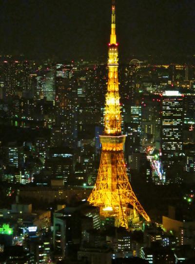 六本木ヒルズ スカイデッキ~大東京の夜景一望に ☆けやき坂・毛利庭園 電飾鮮明