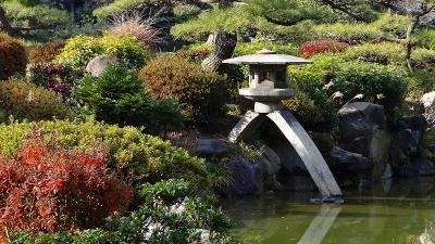 天王寺公園 慶沢園の見学