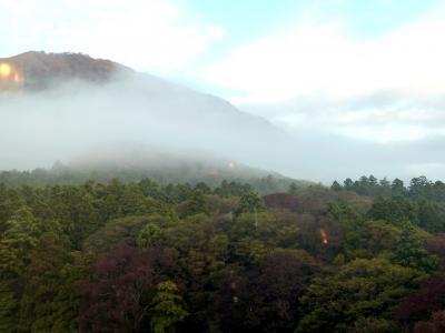 奥の細道を訪ねて第13回⑧ホテルの窓からの朝靄の弥彦の村々 in 弥彦