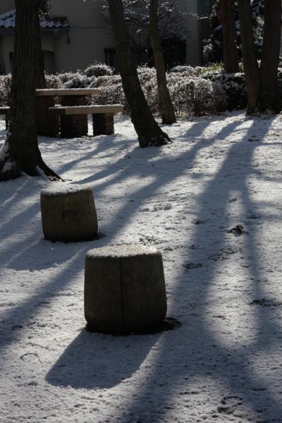 小さな旅 雪明けの公園 Snow Garden in Kotesashi