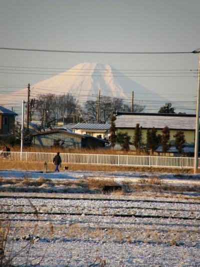 雪景色の早朝ウォーキング