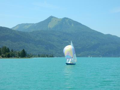 山と湖に囲まれてザルツカンマーグートで過ごす夏(4)遊覧船から見るザンクト・ヴォルフガング湖